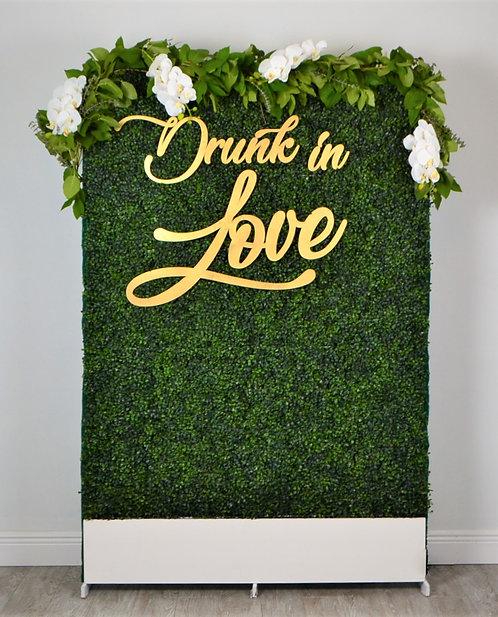 Drunk in Love + Grass wall
