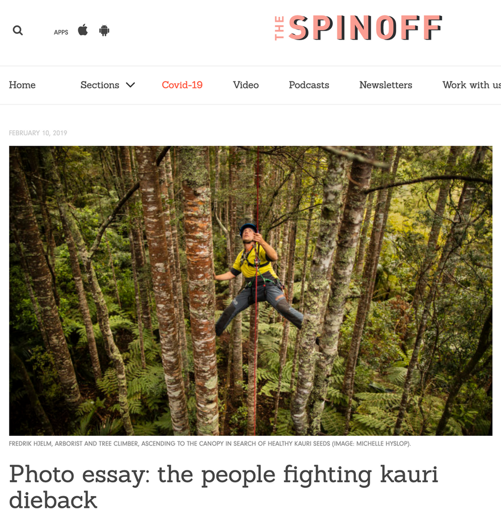 THE SPINOFF ARTICLE