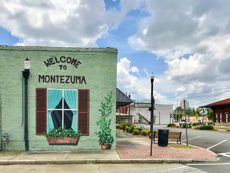 Exploring rural Georgia: Macon County