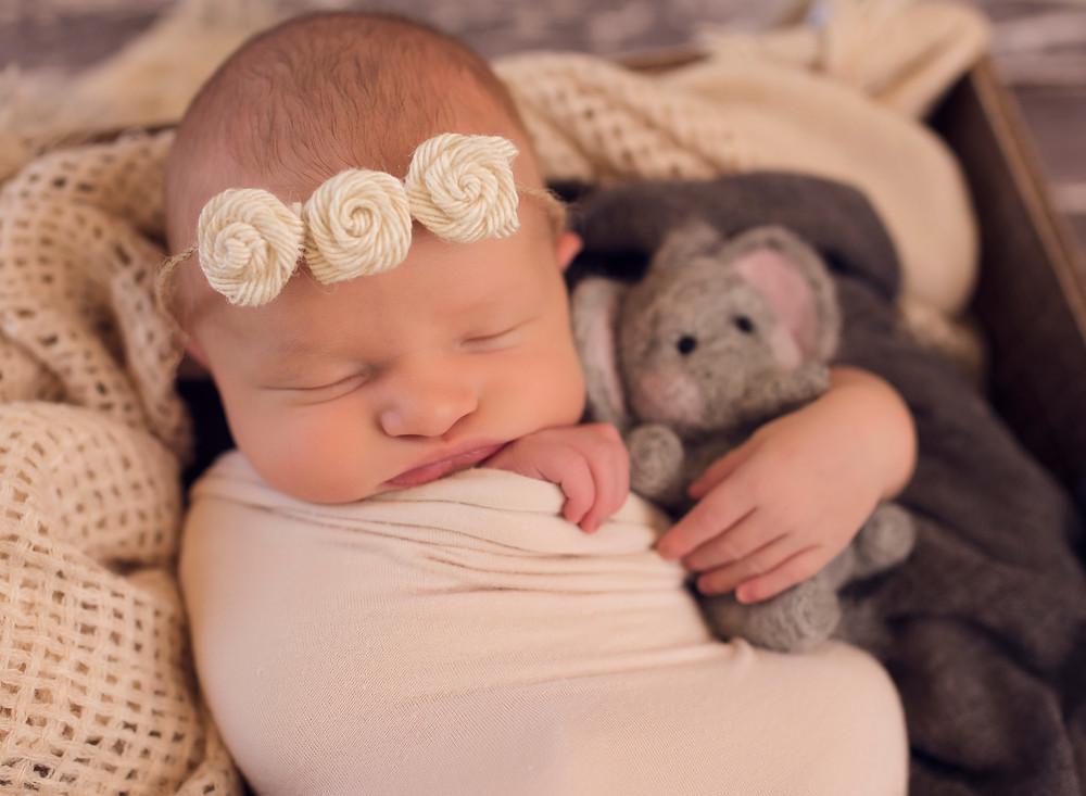 Newborn Baby with Elephant Prop