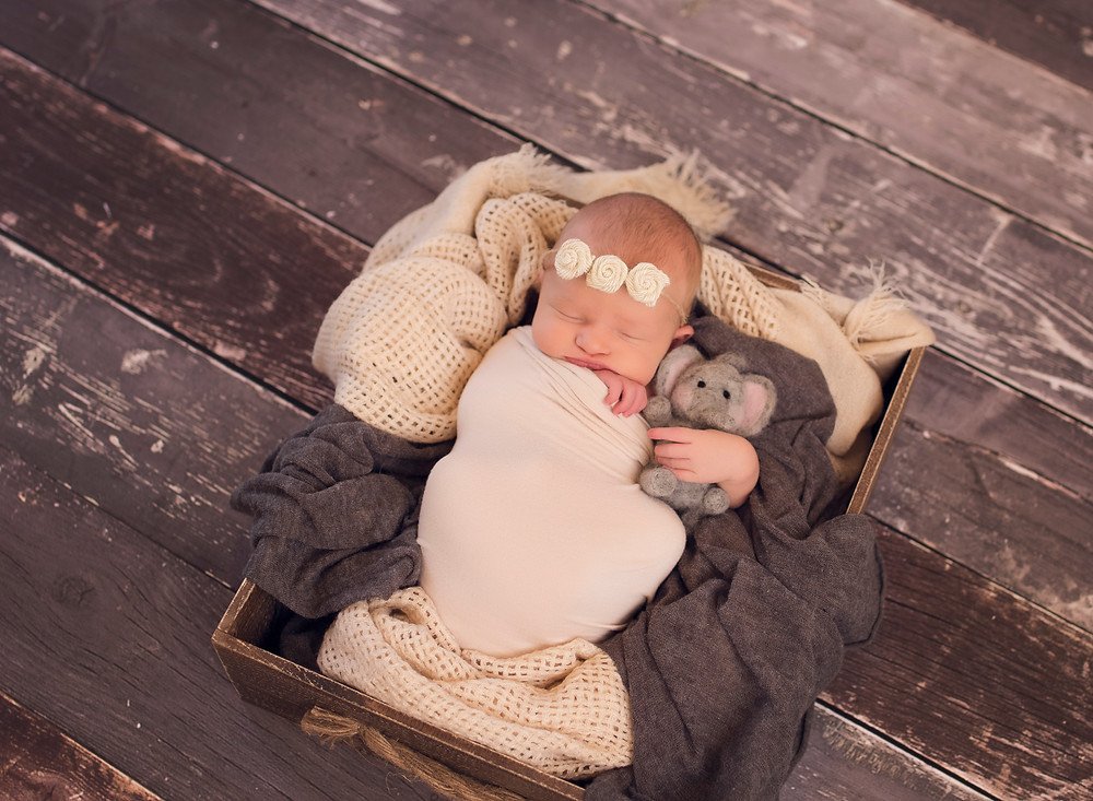 Neutral Newborn Baby Girl in Wooden Prop Box with Elephant
