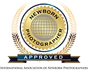 INP-logo-300x239.png