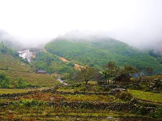 Vegetarisch eten in Noord & Midden Vietnam