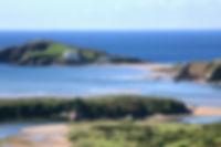 Estuary & BI from S & P.jpg