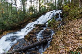 Vogel State Park, GA