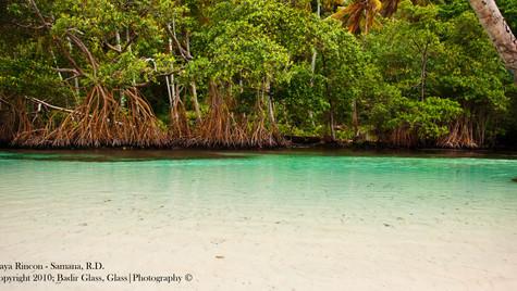 Playa Rincon, Dominican Republica