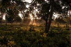 Sunrise in Samana