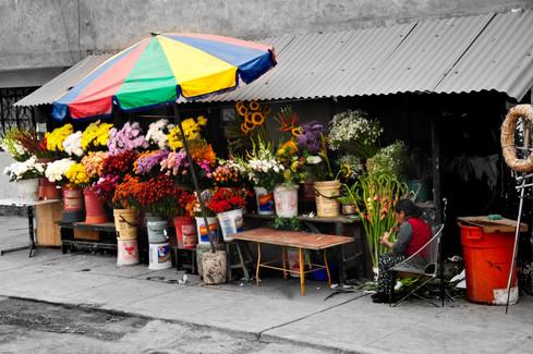 Peruvian Street Flower Stand