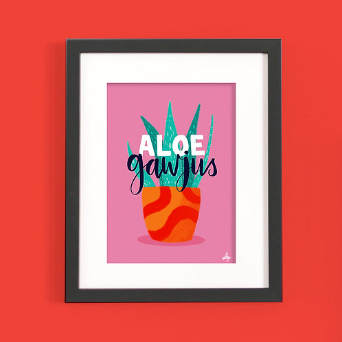 Aloe Gawjus (x6) PR2
