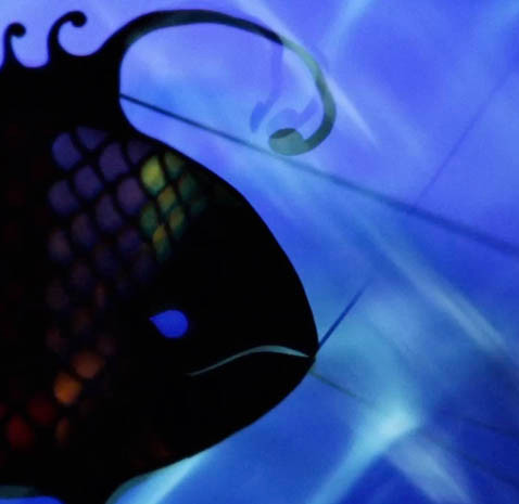 Wye Oak Fish