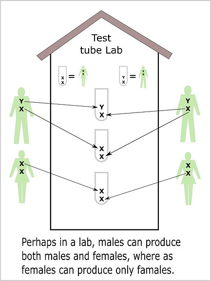 M F tst tube lab.png