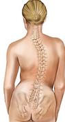 頸部和背部疼痛