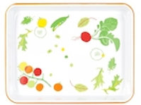 Veggie Small Rectangle Tray 29x23 cm - 4 pcs
