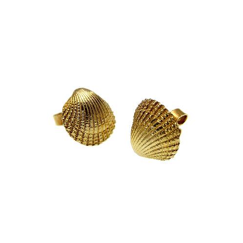 Σκουλαρίκια Clam Seashell | Χρυσός K14