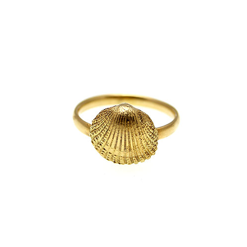 Clam Seashell Ring | Gold K14