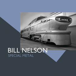 Special Metal - Cover