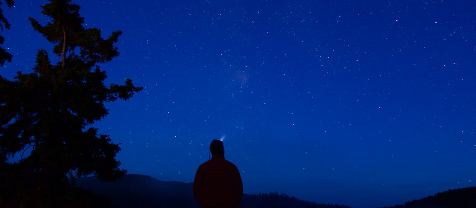 The Feline Astronomer.