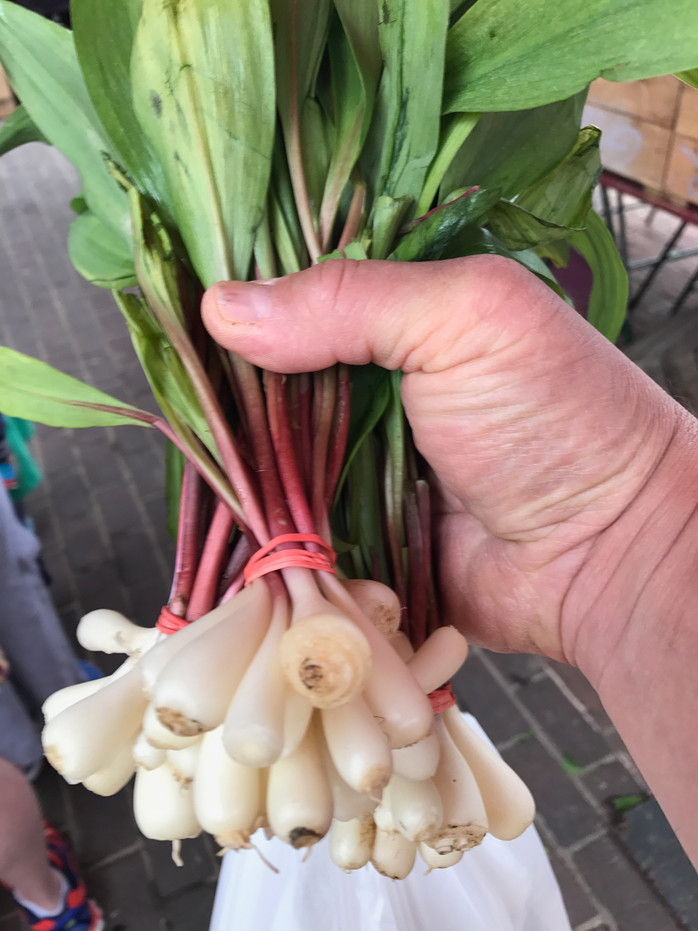 You know it is Spring when... RAMPS!