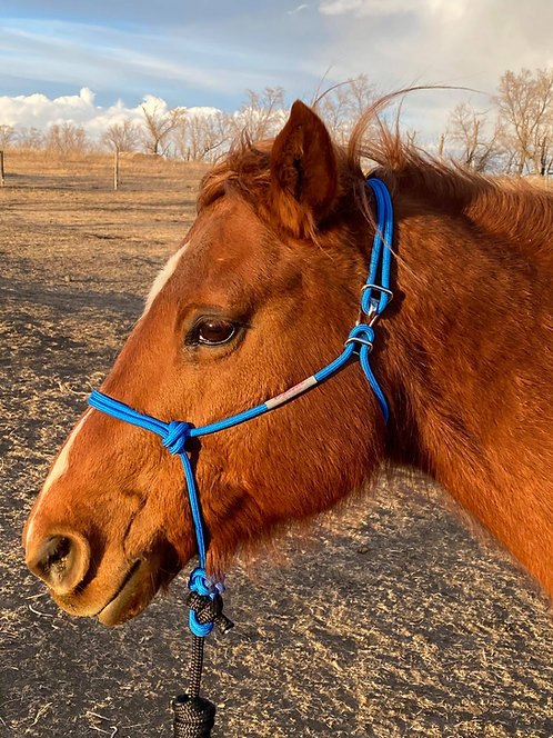 "5/16"" Firm HOOKIN' HALTERS®-Size Horse"