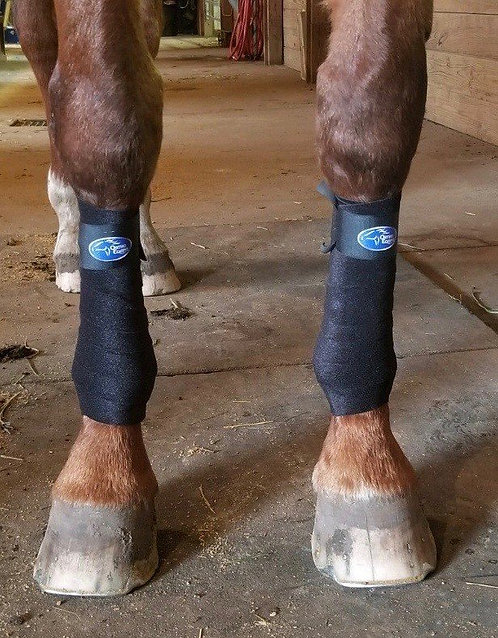Ortho Equine Recover Polo Wraps