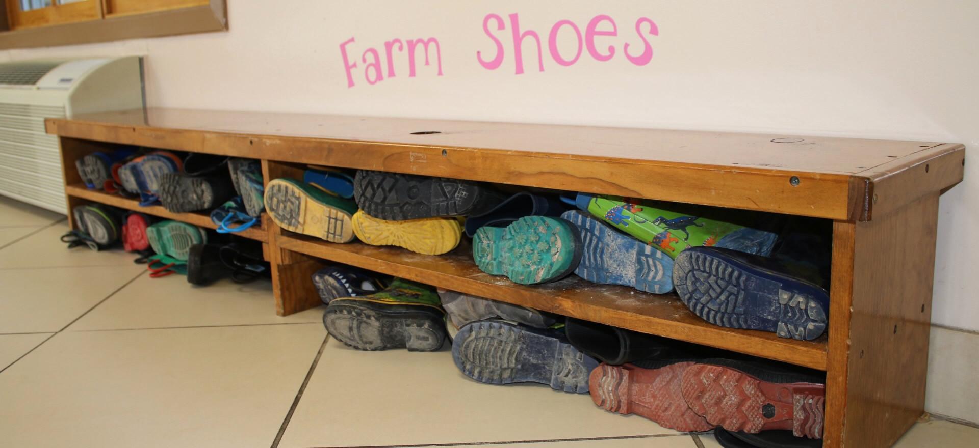 Farm shoes