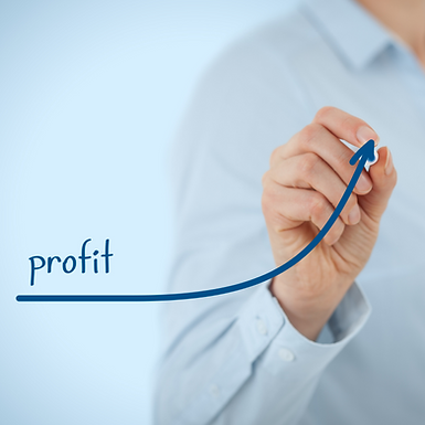 Financial Adventure Profit.png