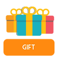 Gift Financial Adventure