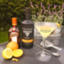 Edge Gin Martini Orange 1.jpg