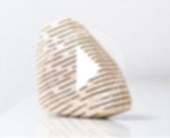 pico con logo video .jpg