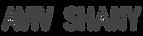 Logo Aviv Shany.png