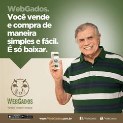 Publicidade para Webgados