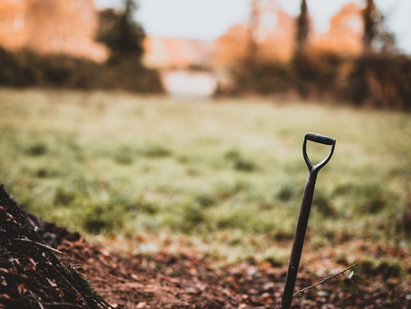 Part 2 of Trench Digging: a Journey through Lent