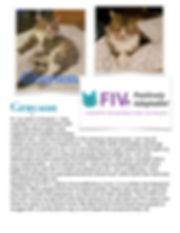 Grayson FIV-liana-1.jpg