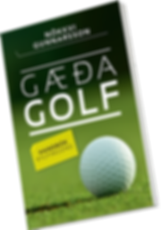 GaedaGolf_kapa_3D_NET.png