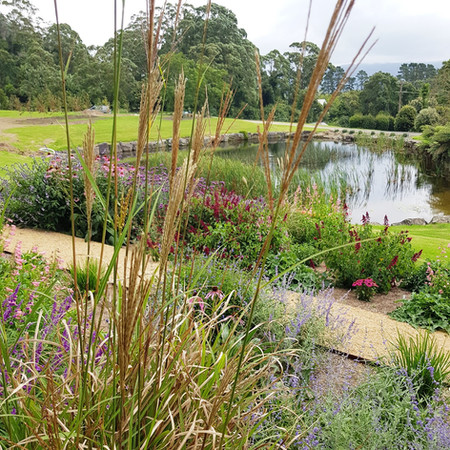 Ornamental grasses with decomposed granite pathway, lined by corten steel