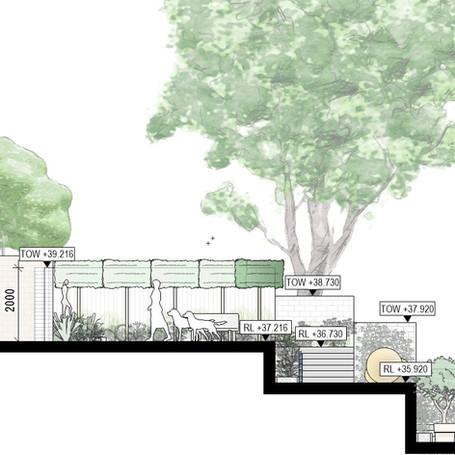 Cross section - terraced garden in Paddington