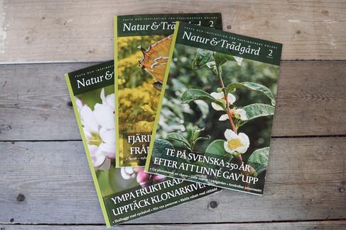 Återkommande uppdrag för tidskriften Natur & Trädgård