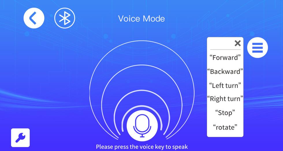 Voice Mode 語音模式