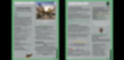 SPF Website Boxes - PortFolio Gallery Ne