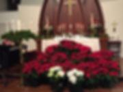 2018 Christmas Poinsettias