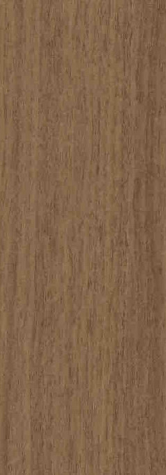 Enigma Oak