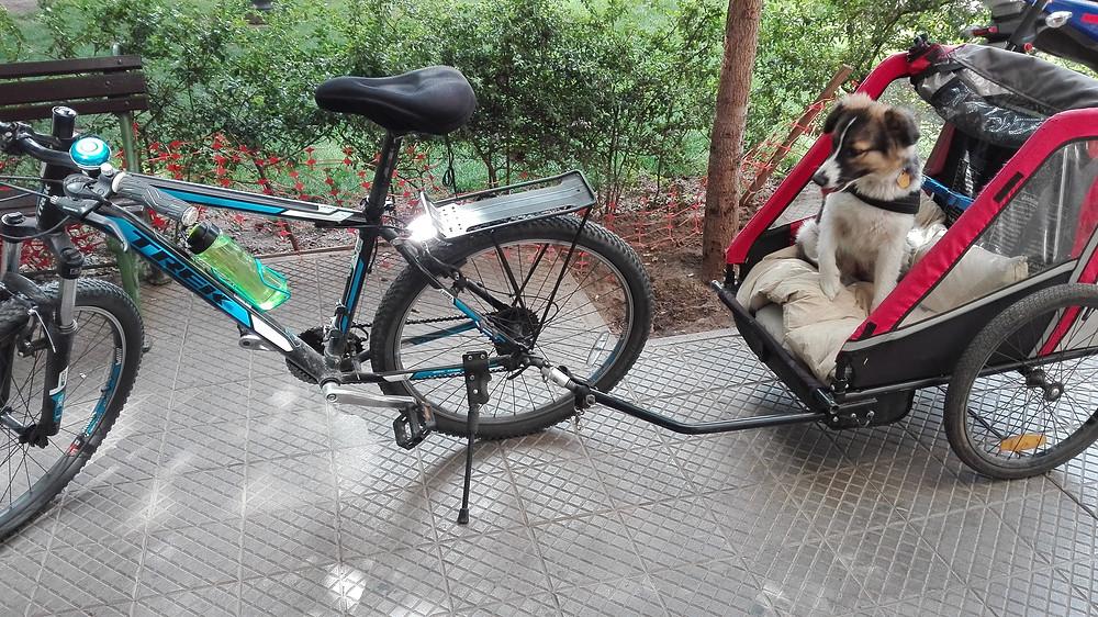 Yo en bicicleta.