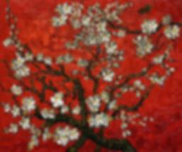 Vincent van Gogh : Bloeiende Amandelboom