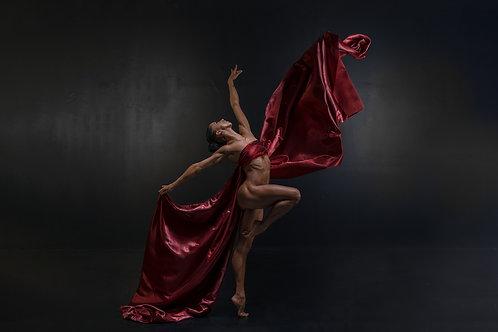 Movement in Silk - formaat 120x180cm - Diasec afwerking