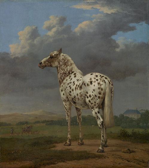 Paulus Potter : het gevlekte paard