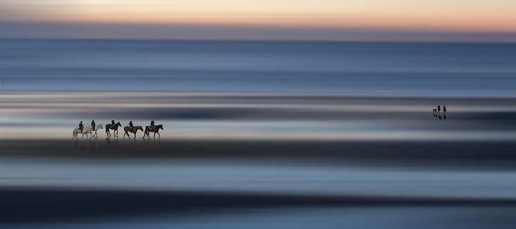 Horses on the beach Formaat 100x150
