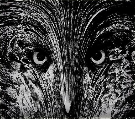54x60 cm Owl Face