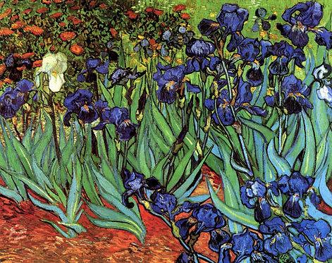 Vincent van Gogh : Irissen 120x92 cm