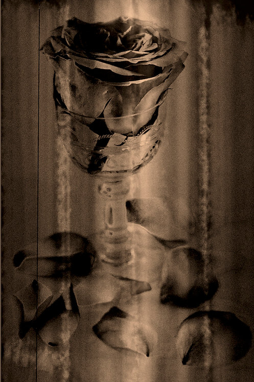 Shot glass Aluminium 60x90 cm