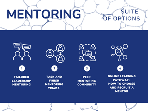 Mentoring suite of options.png